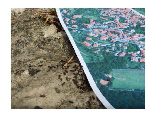 Arte tra architettura urbanistica e mix media art sabato 25 luglio 2020 ad Aurisina (Trieste)